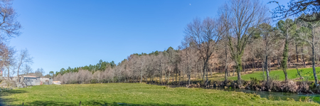 Ultra panoramic view, farm grass, close to the river with parallel trees, forest and blue sky with moon as background, in Portugal