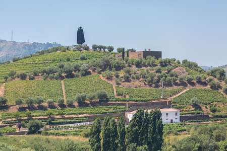 Peso da Regua / Portugal - 07 25 2019 : Full view at the typical landscape of the highlands in the north of Portugal, levels for agriculture of Porto wine vineyards on Douro river borders, Peso da Regua city