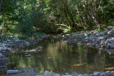 View of a landscape with river and forest trees on the banks, on Serra da Estrela National Park...