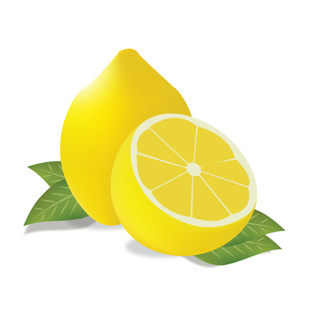Lemon vector Vector