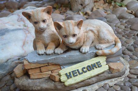 hardened: Welcome cat
