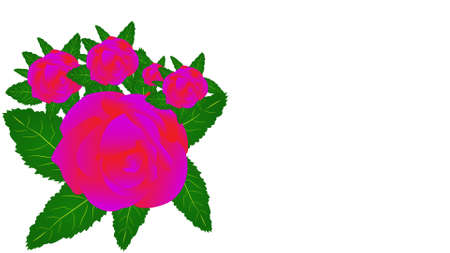 Group of red roses with green leaves isolated on white background. Ilustrace