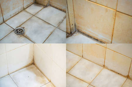 Stains on joints, corners, and surfaces of bathroom tiles. Source of the pathogen. Imagens