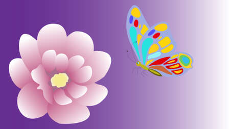 Soft color flower and butterfly isolated on background. Greeting card.