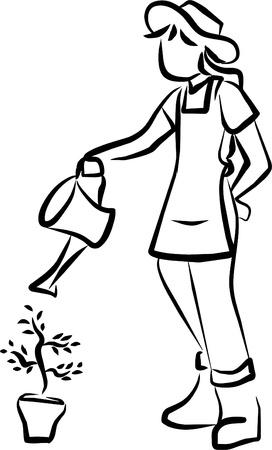 irrigate: gardener watering plants