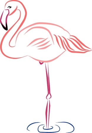 pink flamingo resting quietly in the water Illustration
