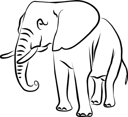 mammals: African elephant drawing big-eared black and white