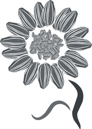 a sunflower made with seeds Stock Vector - 9427339