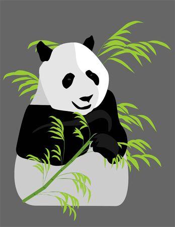 drawing of a panda eating bamboo