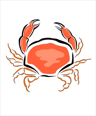 cangrejo: dibujo de un cangrejo Vectores