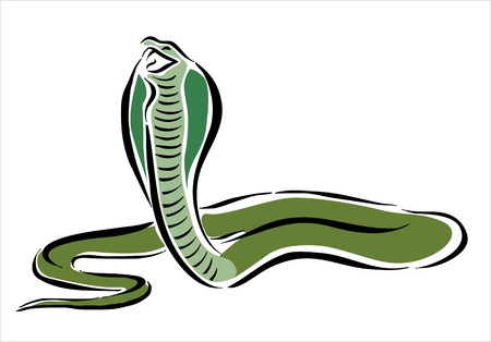 drawing of a cobra attacking Stock Vector - 15498120
