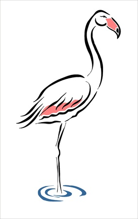 wader: drawing of a flamingo in the pond