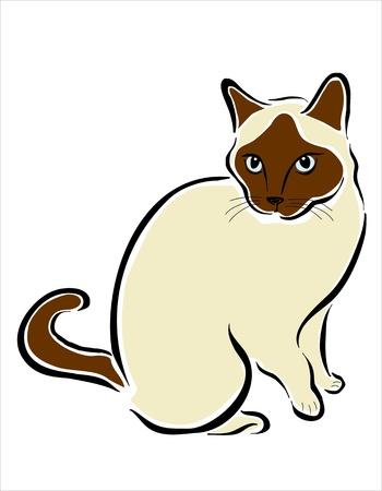 siamese: Bild von einer siamesischen Katze Illustration