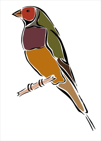 fauna: drawing of a bird in a branch