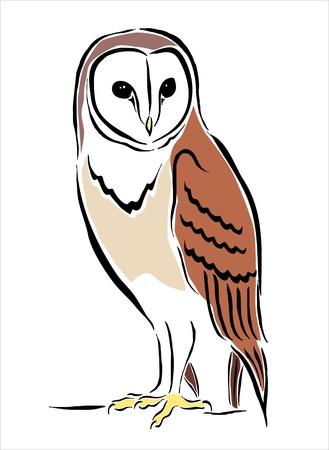 oviparous: drawing of an owl