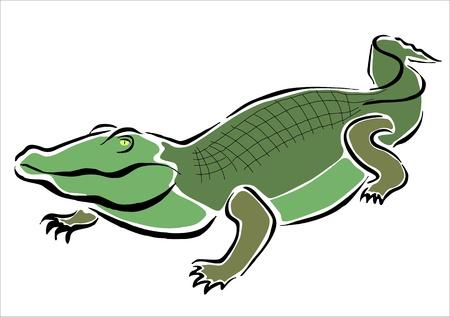 oviparous: drawing of a crocodile