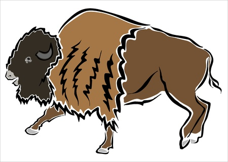 buffalo horn: drawing of an american bison Illustration