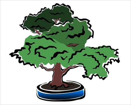 drawing of a bonsai in a blue potted