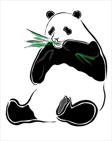 drawing of a panda Stock Vector - 15526668