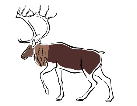 tundra: drawing of a reindeer Illustration