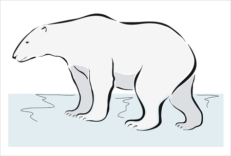drawing of a polar bear on ice Vector