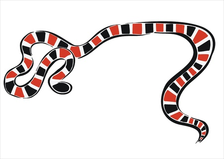 coral snake: drawing of a coral snake Illustration