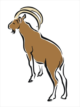 mountain goat: drawing of a brown mountain goat