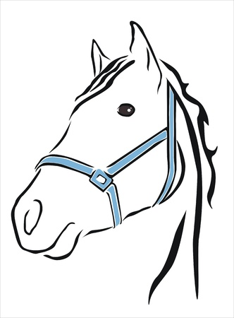 nostril: drawing of the head of a white horse Illustration