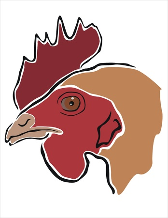 drawing of the head of a hen Stock Vector - 19425273