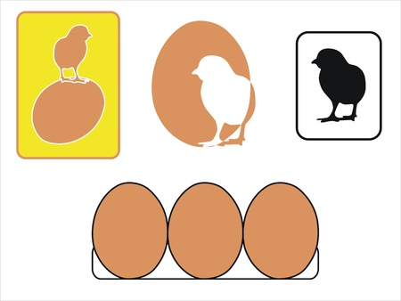 chikens: several icons about chikens and eggs