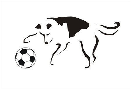 canid: dog playing with a soccer ball