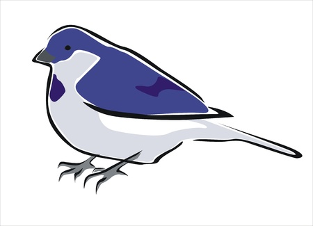 oviparous: drawing of a blue bird