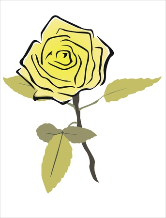 drawing of a yellow rose