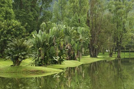 Reflection on Lakeside