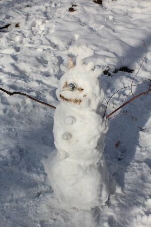 carrot tree: Real snowman made by children, not fake.