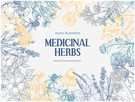 Rectangular card template with vintage sketches of medicinal herbs and flowers.