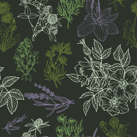 Color vector seamless pattern in green and purple colors, dark background.