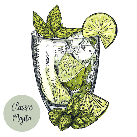 Cute card design with hand-drawn vector colorful sketch illustration of mojito cocktail, lime slices and mint leaves