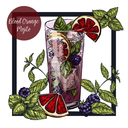 Square framed card with blood orange mojito with blackberries, surrounded by mint leaves, vector realistic colorful sketch illustration Illustration