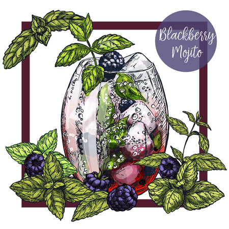 Square framed card with blackberry mojito with blackberries, surrounded by mint leaves, vector realistic colorful sketch illustration
