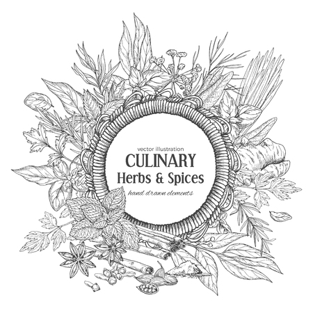 Round rope frame surrounded by culinary herbs and spices, vector illustration