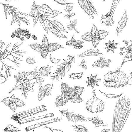 Modèle sans couture avec herbes et épices culinaires dessinés à la main, illustration vectorielle Banque d'images - 82433893