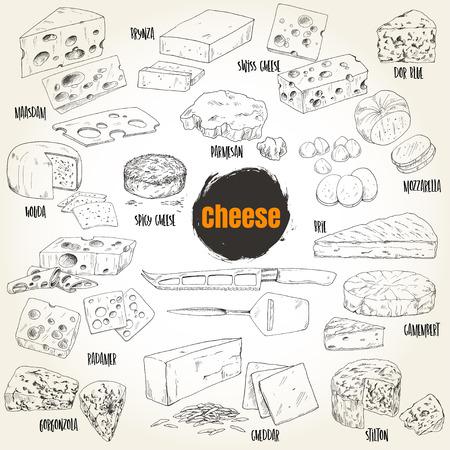 Différents types de collection de fromages tirés à la main, illustration vectorielle