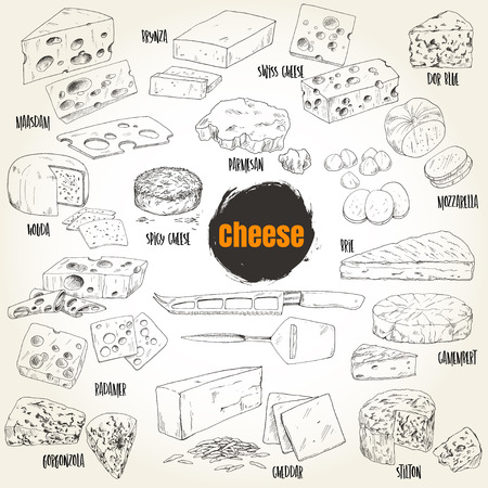 Hand drawn different types of cheese collection, vector illustration