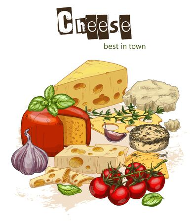 Full color realistic sketch illustration of cheese  with basil and cherry tomatoes, vector food illustration.