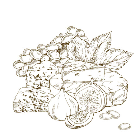 Pile of hand drawn cheese with grape and fig. Vector hand drawn illustration.