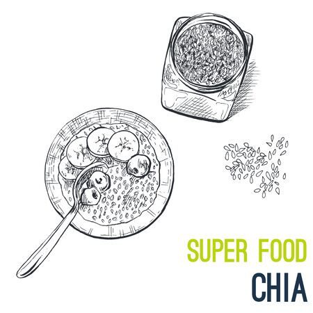 Chia seeds. Super food hand drawn sketch vector illustration.