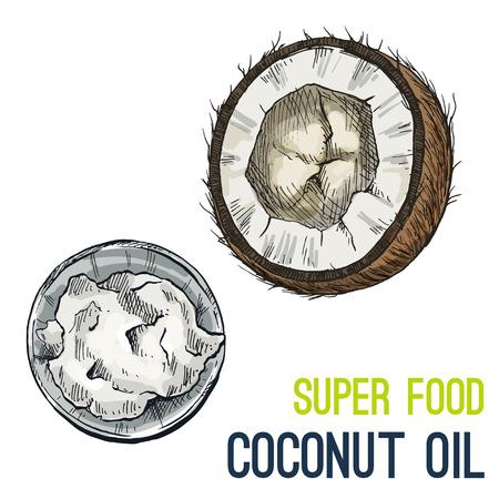 Coconut Oil. Full color super food hand drawn sketch vector illustration.