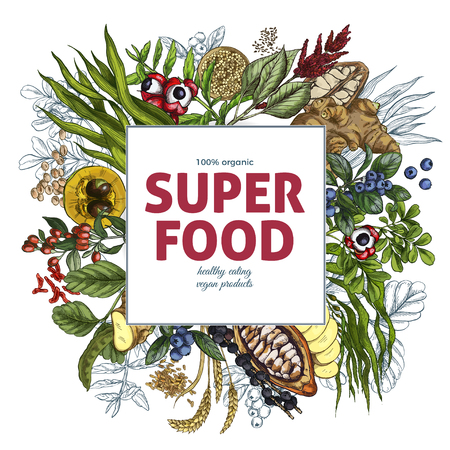 Superfood square banner, full color realistic sketch vector illustration, vegan healthy food design. Kelp, cacao, ginger, moringa, blueberry, goji, stevia, seeds, grain. Stock Vector - 83220166