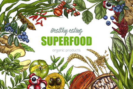 Superfood, realistic sketch frame design for vegan cafe or restaurant. Hand drawn vector illustration. Kelp, cacao, ginger, moringa, blueberry, goji, stevia, seeds, grain. Stock Vector - 83220172